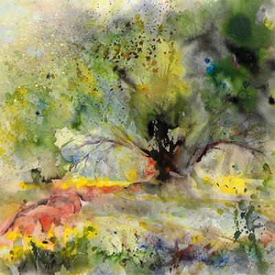 paul hoare tree THUMB