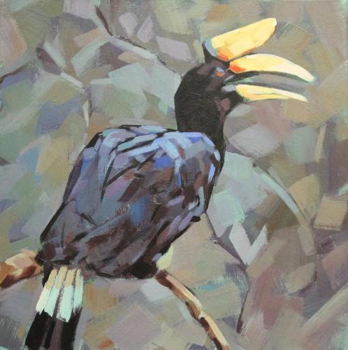 rhinocerous-hornbill orig